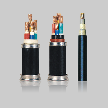0.6-1kV聚氯乙烯绝缘电力电缆